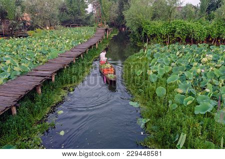 Srinagar, India - Julay 31, 2017: Indian Vegetable Traders In Floating Vegetable Market In The Middl