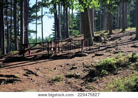 Twin Picnic Tables Set On A Quiet, Rocky, Tree Filled Hillside.