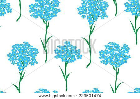 Seamless Pattern With Bunches Of Blue Forget-me-not Flowers On A White Background. Vector Illustrati