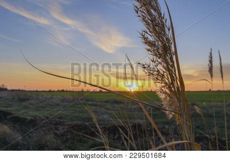 Sunset Near Tulenovo Village In Endless Field Around The Road.