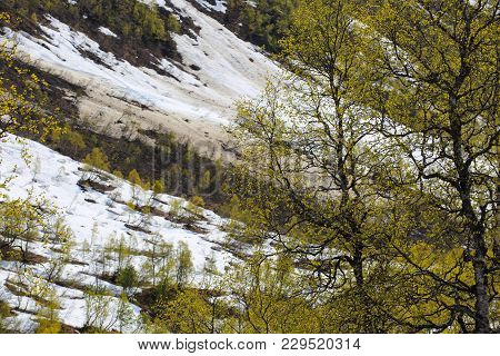Spring Mountains And Melting Snow