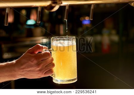 Bartender Pouring Fresh Beer In Pub. Beer Pouring From A Tap. Barman Hand At Beer Tap Pouring Lager