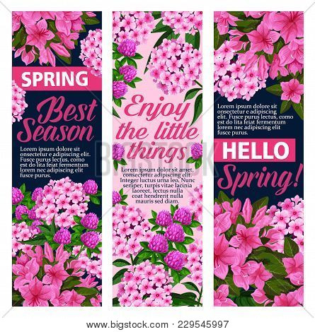 Spring Time Greeting Banners Of Flowers For Springtime Holiday Season Celebration. Vector Design Or
