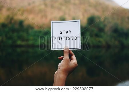 Stay focused text in nature inspirational motivation and advice concept