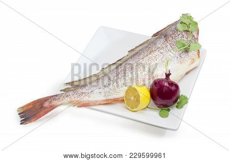 Carcass Of The Uncooked Red Cod Without Heads And Purified From Fish Scale With Cilantro Twigs, Lemo