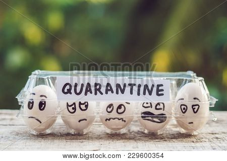 Eggs In A Box, Quarantine. Eggs Are Considered When Passing Quarantine At The Border.