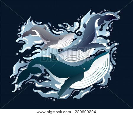 Illustration Of Cartoon Cute Whales Family Sea Animals Set. Sea Collection Of Mammals