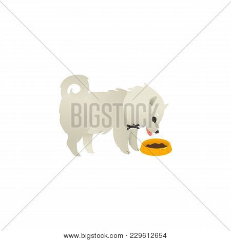 Cute Fluffy Little Dog Eating From Bowl, Side View Portrait, Flat Cartoon Vector Illustration Isolat