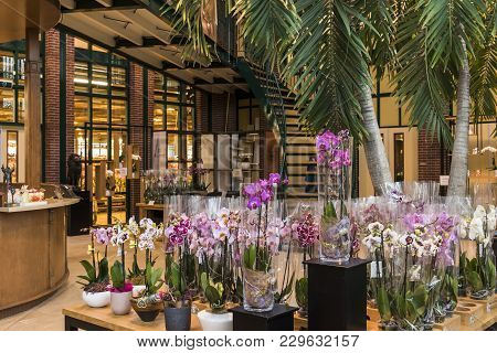 Honselersdijk, The Netherlands - January 5, 2018: Shop In A Great Orchid Growing Greenhouse In Westl