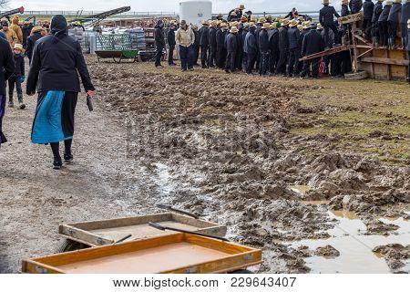 Muddy Fields At Mud Sale