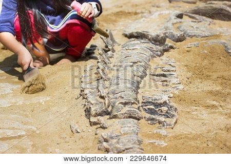 Children Are Learning Dinosaur Remains, Excavating Dinosaur Fossils Simulation In The Park, Asia Tha