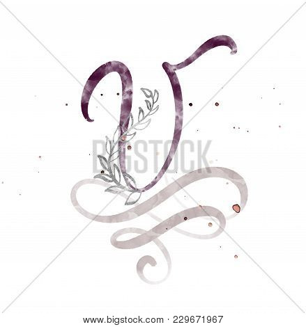 Hand Drawn Calligraphy Letter V. Watercolor Script Font. Isolated Letters Written With Ink. Handwrit