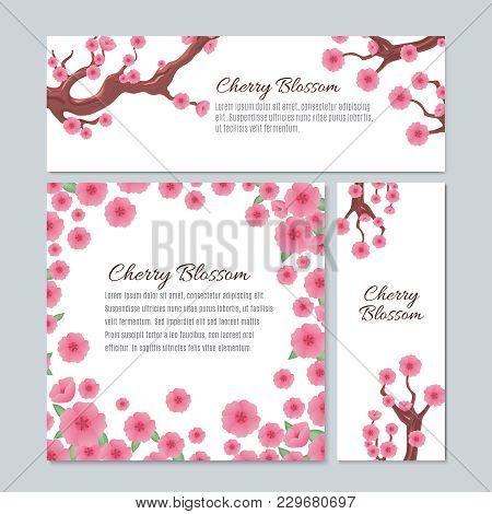Sakura Blossom With Pink Cherry Flowers Vector Invitation Wedding Card Template. Illustration Of Sak