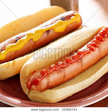 hot dog- two on a plate with ketchup and mustard.
