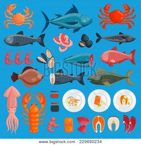 Vector Sea Food Cuisine Fresh Fish And Shrimp, Crab, Squid Illustration Set Design Flat Fish And Cra