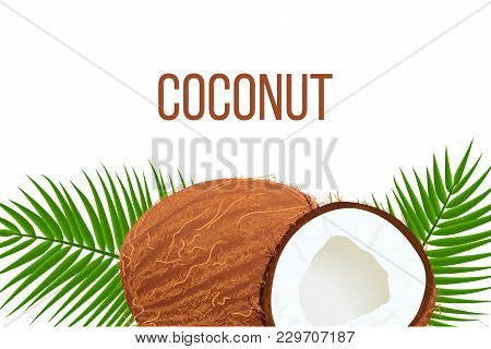 Whole And Cracked Ripe Coconuts And Palm Leaves. Place For Text. Label Template. Tropical Vector Ill