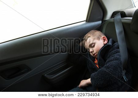 Sleeping Small Boy Sitting In Car In Back Seat With Seat Belt