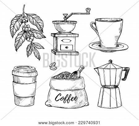 Natural Grain Coffee Vintage Hand Drawn Illustration Set. Cup On Saucer, Coffee Grinder, Coffee Bean