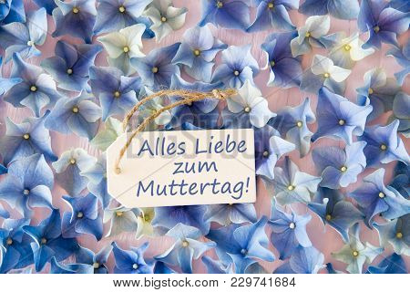 Label With German Text Alles Liebe Zum Muttertag Means Happy Mothers Day. Flat Lay Of Hydrangea Blos