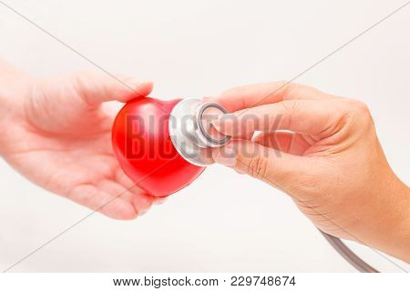 Hands Holding Heart With Stethoscope On White Background. Heart Illness, Disease Protection, Proacti