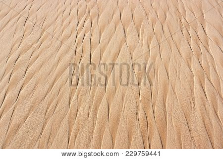 Awesome Background Of Sand .summer Beach Close Up View.