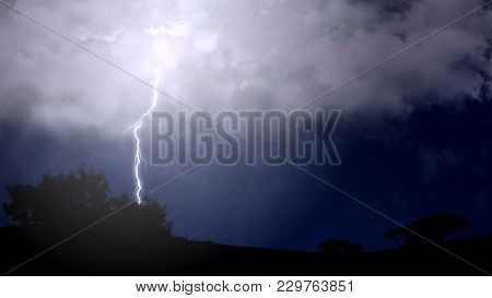 Fork Lightning Striking Down During Summer Storm, Beautiful Scene, Weather, Stock Footage
