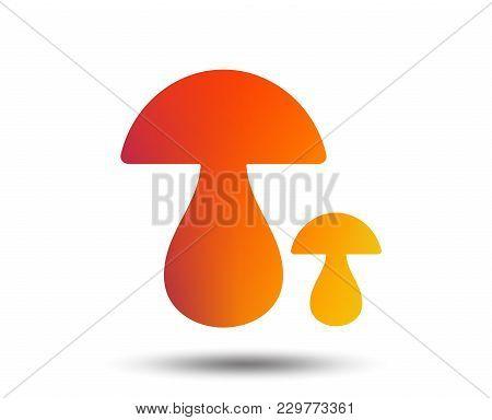 Mushroom Sign Icon. Boletus Mushroom Symbol. Blurred Gradient Design Element. Vivid Graphic Flat Ico
