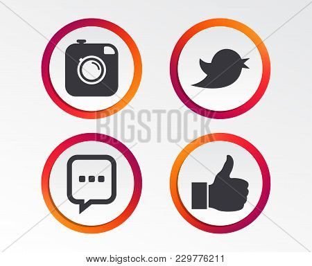 Hipster Photo Camera Icon. Like And Chat Speech Bubble Sign. Hand Thumb Up. Bird Symbol. Infographic