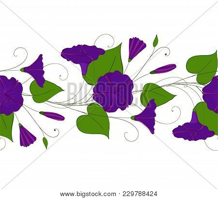 Seamless Pattern Of Blue Convolvulus. Garland With Bindweed Flowers. Morning-glory Elegant Ornament.