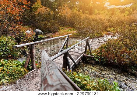 Wooden Footbridge Across Stream In The Mountain Forest, Slovak High Tatras.