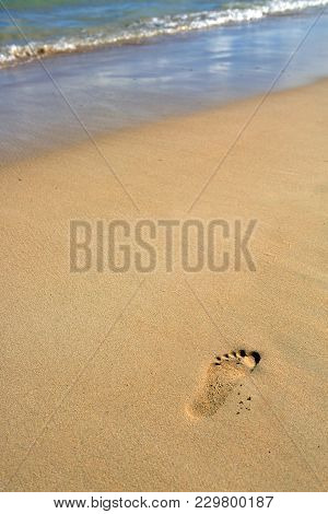 Footprints In Wet Sand Of Caribbean Beach.