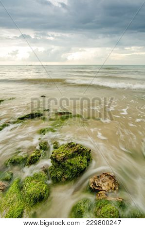 Beautiful Green Algae On The Stone At The Beach During Low Tide Water. Sunlight And Dark Clouds. Wav