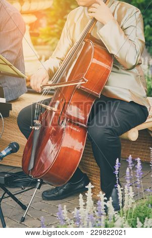 Man Playing Cello In Morning Ligth Gold