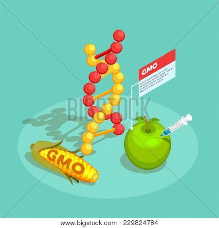 Gmo Food Isometric Composition On Turquoise Background With Dna Molecule, Genetically Modified Corn