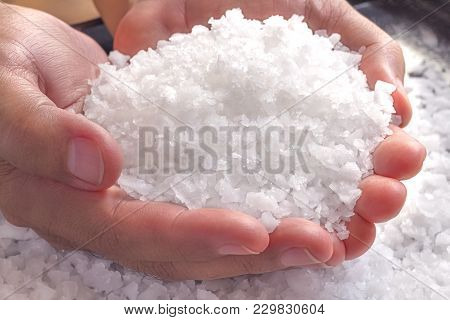 Sea Salt In The Hands Of Men. Sea Salt Is Used For Seasoning, Preserving Food And Making Beauty Trea