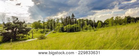 Panorama Of The Summer Landscape Of Park On The Shore Of A Pond