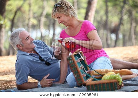 Middle-aged couple enjoying picnic