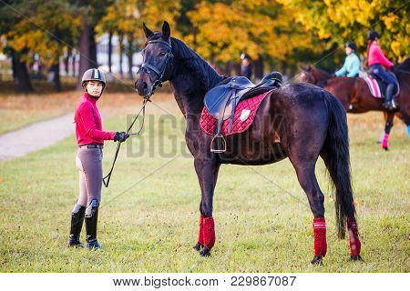 Group Of Rider Girls Walking With Horses In Park. Equestrian Recreation Activities Background With C