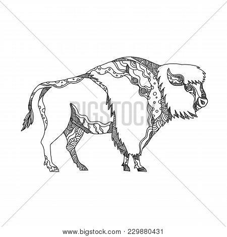 Doodle Art Illustration Of An American Bison, Bison, American Buffalo Or Simply Buffalo, A North Ame