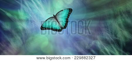 Soul Release Metaphor For Departing Soul - Lone Jade Green  Coloured Butterfly Set Against A Radiati