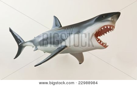A Great White Shark Model Against White