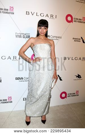 LOS ANGELES - MAR 4:  Tamara Taylor at the 2018 Elton John AIDS Foundation Oscar Viewing Party at the West Hollywood Park on March 4, 2018 in West Hollywood, CA