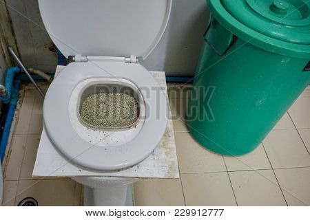 Diy Training Tool For Cat First Step Learning To Use Toilet