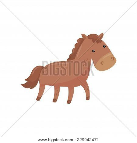 Funny Horse With Short-haired Brown Coat, Mane And Long Tail. Farm Animal. Large Hoofed Livestock Us