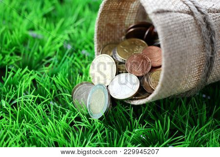 Bag From A Sacking With Money In Green Grass
