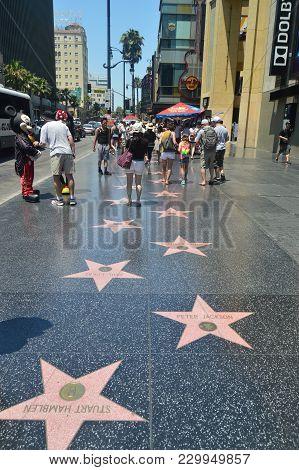 Celebrity Stars On Walk Of Fame In Hollywood Boluvedard. July 7, 2017. Hollywood Los Angeles Califor