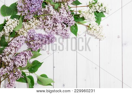 Beautiful White And Violet Lilac Flowers Branches On The White Wooden Background, Mock Up Top Flat V