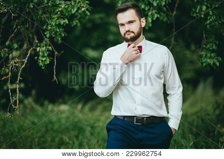 Stylish. Bearded Groom In A Butterfly Posing In The Park. Rustic Hipster Portrait.