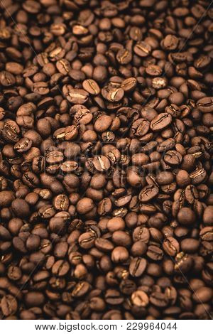 Arabica Coffee Beans Background Nature Rose Medium