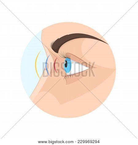 Body Of Human Sight. Biology, Anatomy Of Man And Human Organs. Eye, Organ Of Vision, Visual Percepti